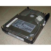 Жесткий диск 18.4Gb Quantum Atlas 10K III U160 SCSI (Авиамоторная)